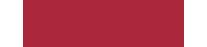 Salp.it Logo